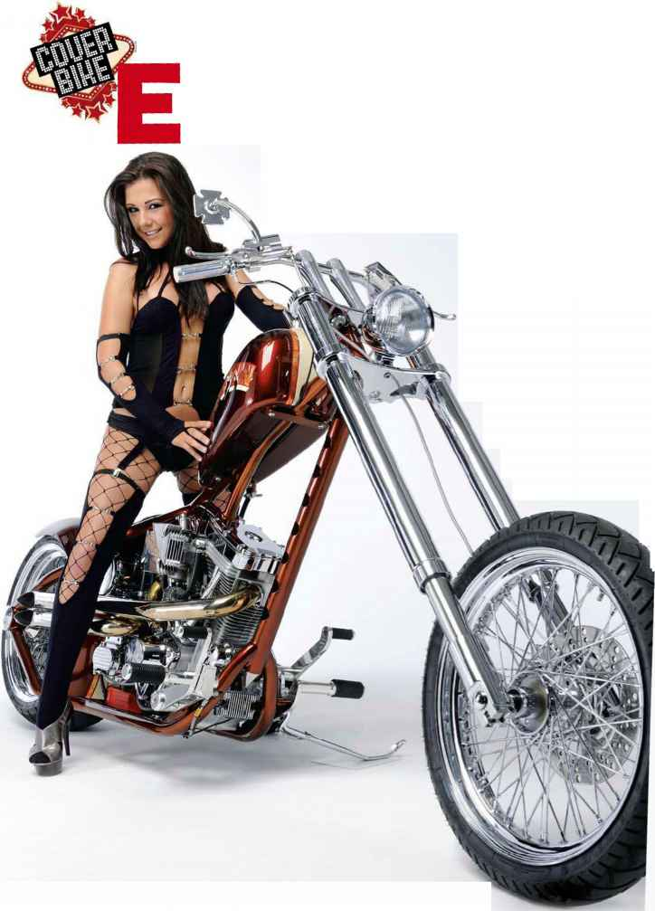 Bicycle Built Like Harley Davidson