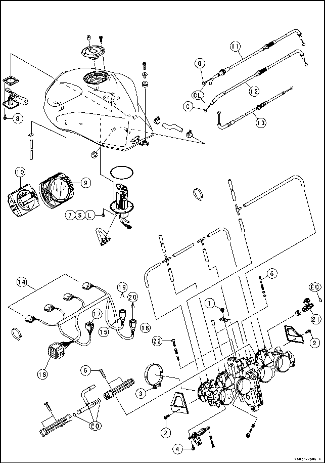 Fuel System Dfi